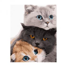 """Набір для розпису по номерах VA-2834 """"Три котика"""", розміром 40х50 см 57694"""